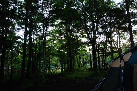 撫岳荘キャンプ場の朝